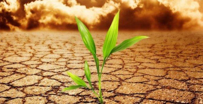 iklim-min Dış Faktörlerin Mersin Sektörüne Etkisi